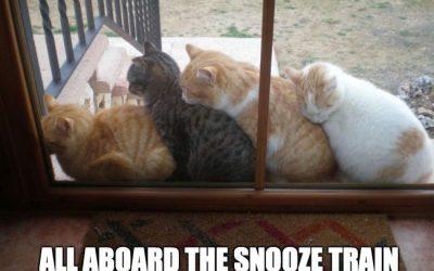 More tips for a good night sleep